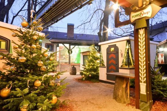 Foresta natalizia forster weihnachtswald braugarten for Giardino forst
