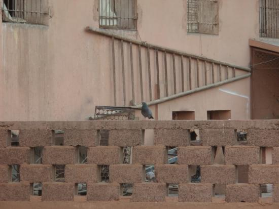 Amalay Hotel Marrakech: View from our 3 inch wide balcony