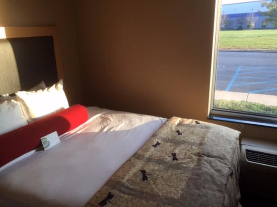 Cambria hotel & suites Indianapolis Airport: 2 Queen Room