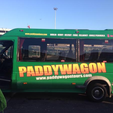 Paddy's Palace: photo1.jpg