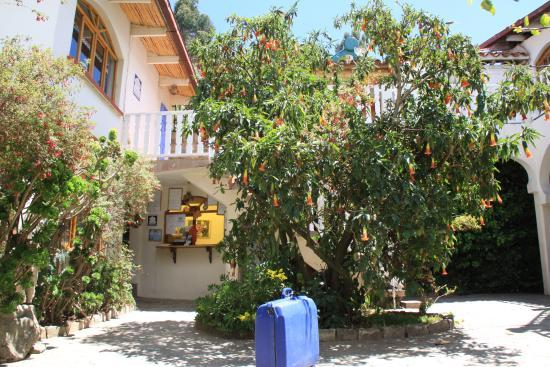 Hotel La Cupula: entrada hostal