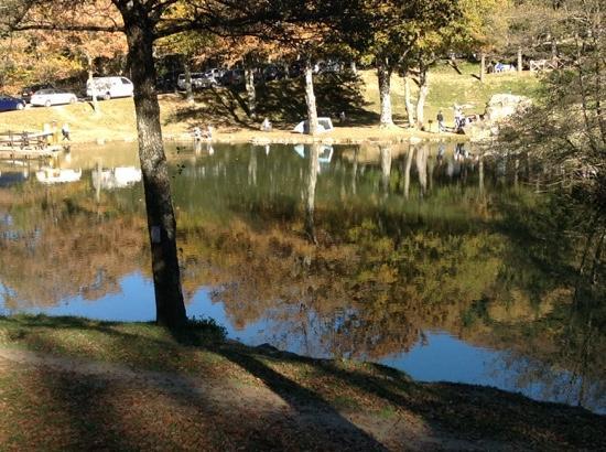 Il lago visto dalla fernanda bild von ristorante dalla fernanda bagno di romagna tripadvisor - Ristorante del lago bagno di romagna ...