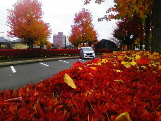 Michi no Eki Nishiyama Park