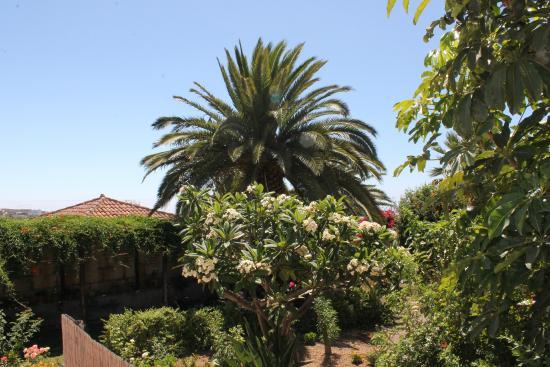 Casa Rural Anton Piche : jardin