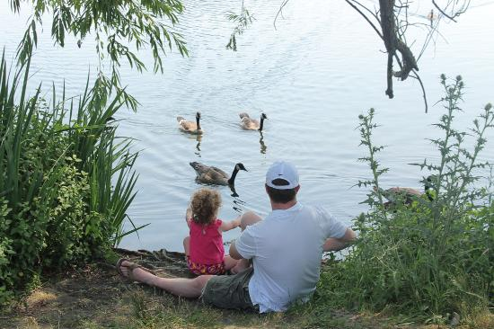 Green Lake Park : Cena en familia