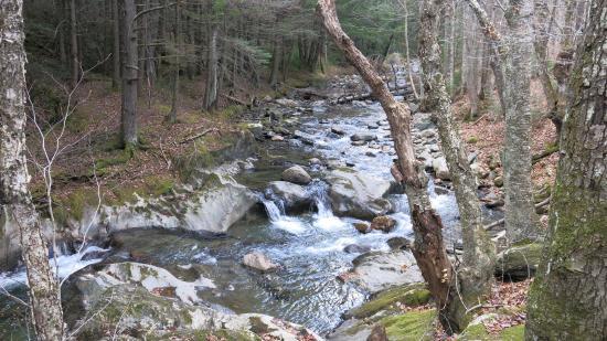 Warren, Вермонт: The waterfall runs along the trail.
