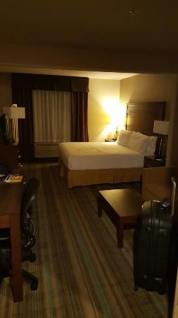 Holiday Inn Express San Francisco Airport-North: 20151112_203955_large.jpg