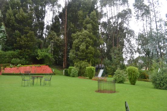Kluney Manor: Lawn