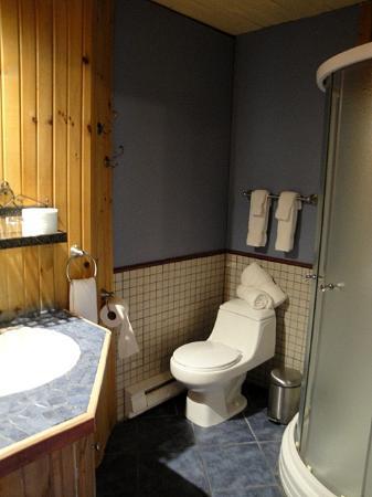 Auberge du Cafe de la Poste: the bathroom