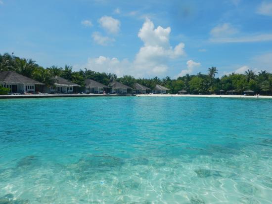 snorkeling picture of cinnamon dhonveli maldives. Black Bedroom Furniture Sets. Home Design Ideas