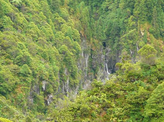 Azores GreenMark - Feel the Azorean Nature: Waterfall on Lombadas