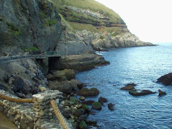 Azores GreenMark - Feel the Azorean Nature: Snorkeling