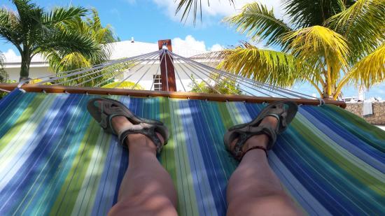 Bimini: From the hammock.