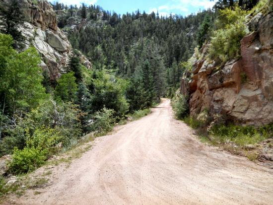 Shelf Road: Shelf Rd scenery