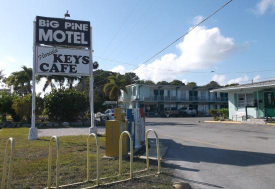 Big Pine Key Motel : 1er mars 2015