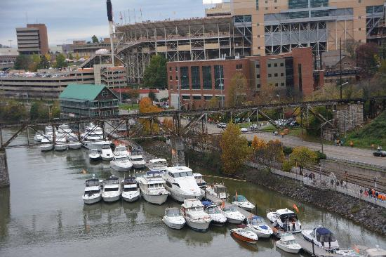 Vol Navy - Picture of University of Tennessee, Knoxville - TripAdvisor
