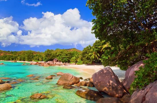 beach (159551608)