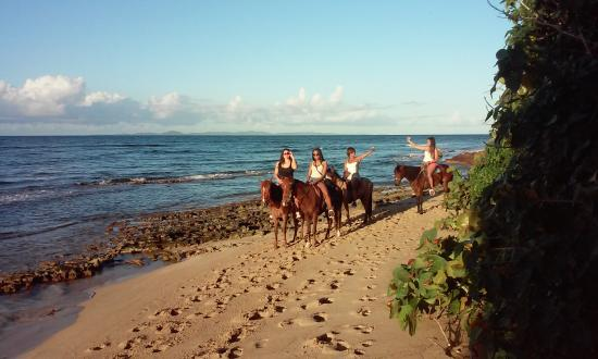 Colon Horseback Riding