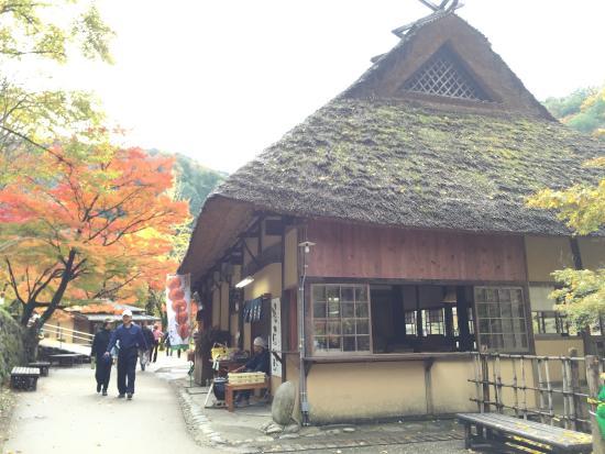 Kurinoki Cafe: お店の外観。茅葺き屋根が素敵です。