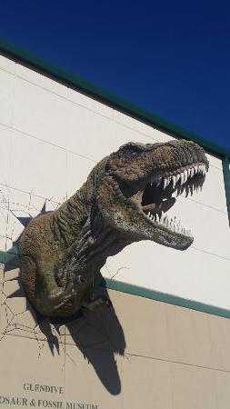 Glendive Dinosaur & Fossil Museum: 20151030_135353_large.jpg