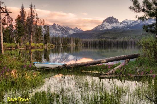 Henrys Lake Foundation - Posts | Facebook