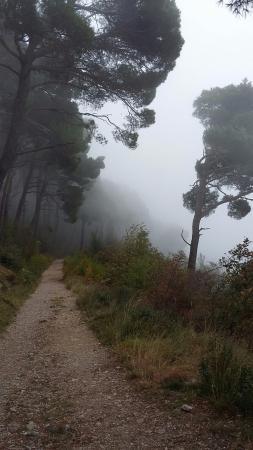 Carso Triestino : la nebbia sale dalla Costiera