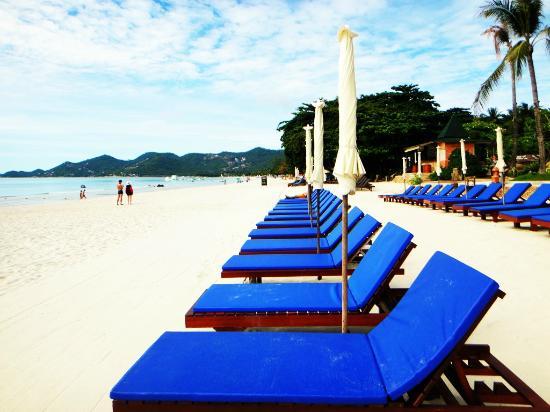 Chaweng Buri Resort : Beach