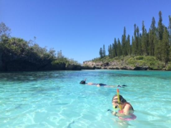 Great snorkeling picture of piscine naturelle ile des for Piscine naturel