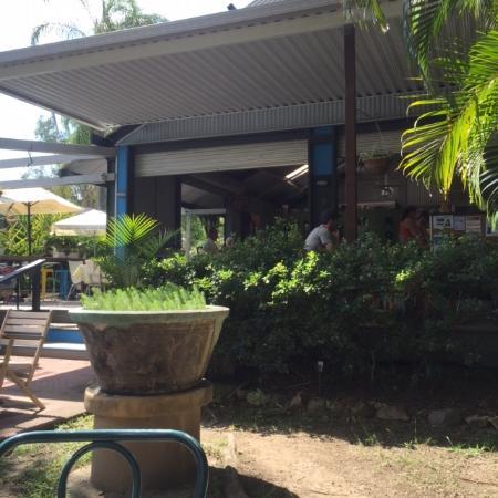 Doonan, Австралия: looking in to cafe