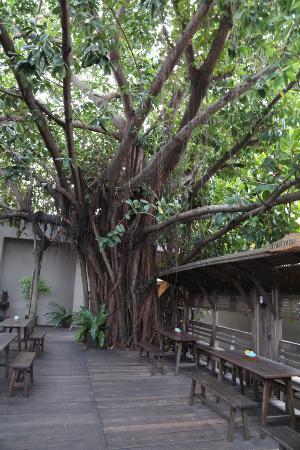 Ban Phai, Tajlandia: Breakfast area