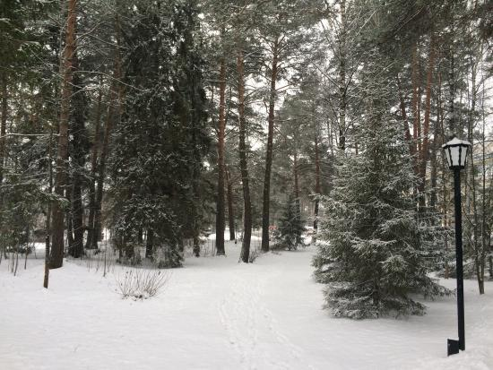 Foto de Ust-Kachka