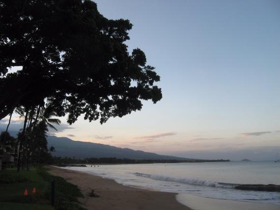Maalaea Surf Resort: Beach to the left.