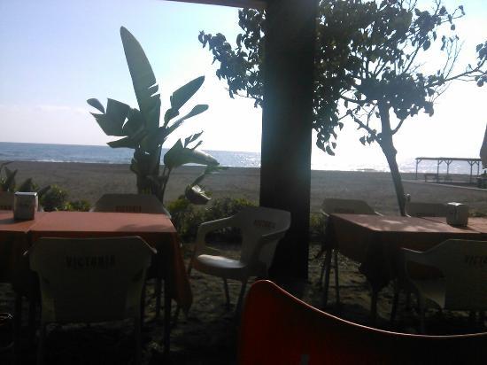 Benajarafe, Spanyol: Playa