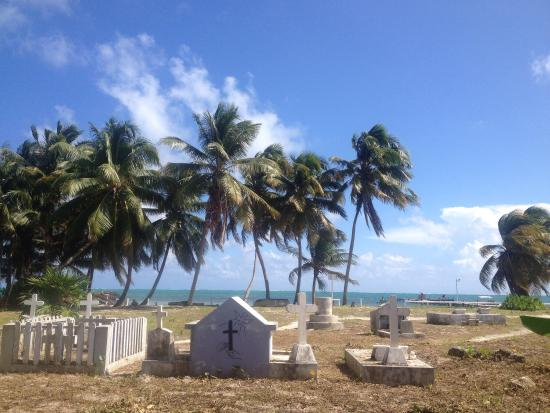 Tropical Paradise Hotel: photo0.jpg