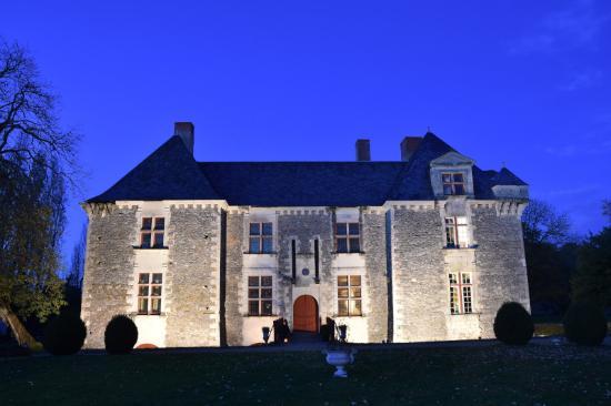 Saint-Aubin-de-Luigné, France : Le Chateau de nuit