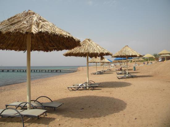 Crystal Hotel : На этот пляж вас отвезут на автобусе