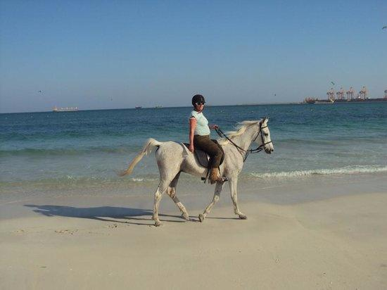 Al Jabal Al Akhdar District, Libya: Beach rides