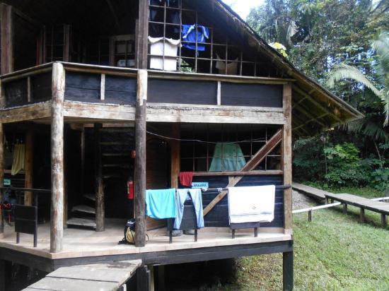 Jamu Lodge : Dortoirs du lodge