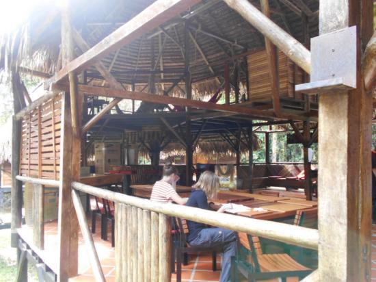 Jamu Lodge : A l'étage, des hamacs sont à dispositions