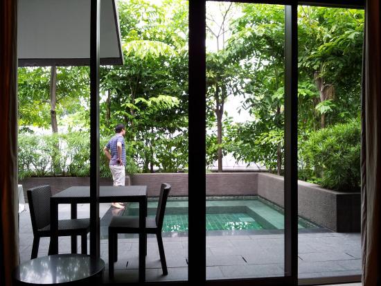 Garden villa room plunge pool picture of capella for Garden pool room