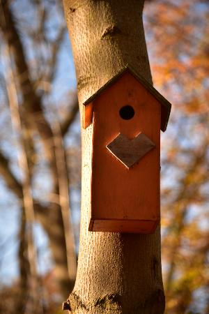 Rungsted, Dinamarca: One of the many bird houses in the preserve