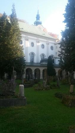 Sebastiansfriedhof: 20151031_115042_large.jpg