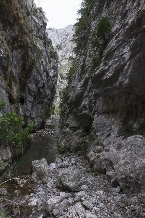 The Cares Gorge : Cares Gorge