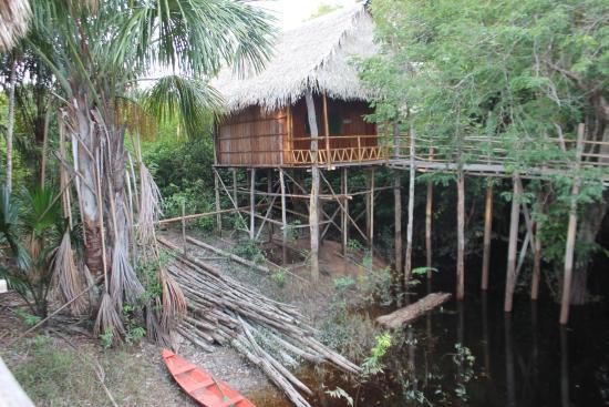 Tariri Amazon Lodge: Habitacion
