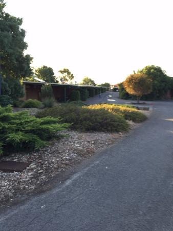 Barossa Motor Lodge: Parking Lot View