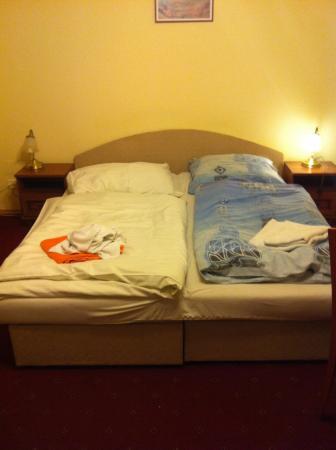 Pension Aaron: Заправили как смогли, полотенца первоначально были сложены аккуратно.