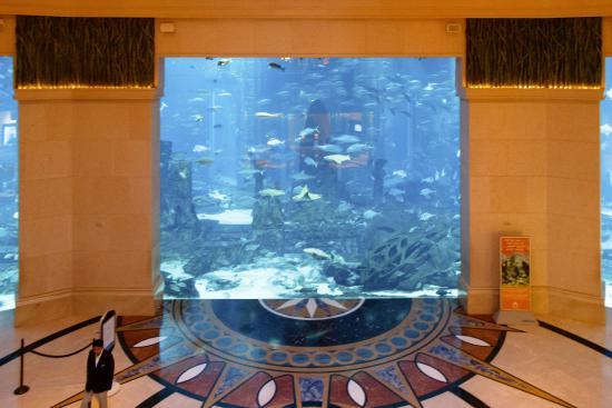 Dubai Hotel Room Prices