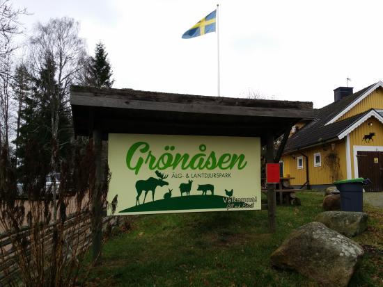 Grönåsens Älgpark: Exterior