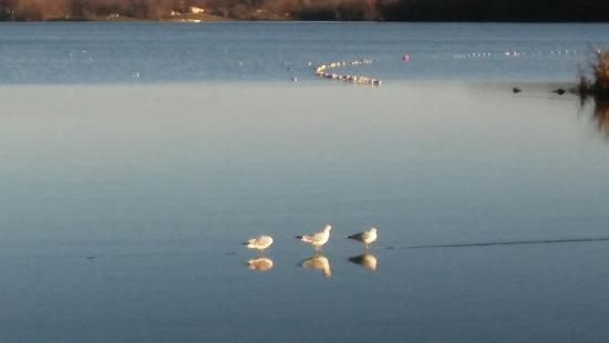 Hillsboro, OH: Rocky Fork Lake State Park