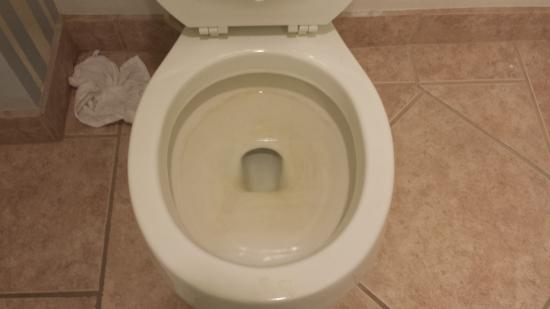 Mediterraneo Resort: dirty toilet taken right after check in - disgusting